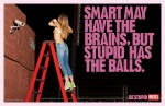 Smart may have the brain, but stupid has the balls