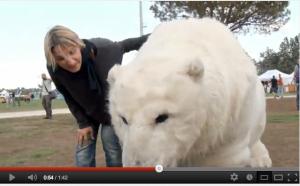 L'orsa di Greenpeace